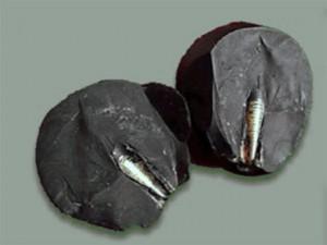 rod-in-stone